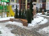 Квартиры Киевская область, цена 550 Грн./мес., Фото