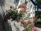 Дома, хозяйства Киев, цена 225000 Грн., Фото