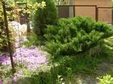 Дачи и огороды Киевская область, цена 48000 Грн., Фото