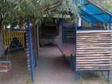 Дачи и огороды Донецкая область, цена 80000 Грн., Фото