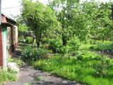 Дома, хозяйства Полтавская область, цена 205000 Грн., Фото