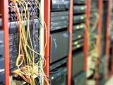 Компьютеры, оргтехника,  Ремонт и обслуживание Инсталяция сетей и прокладка кабелей, цена 150 Грн., Фото