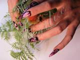 Курси, освіта Курси з манікюру, педикюру, Фото