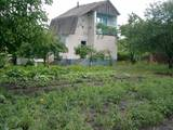 Дачи и огороды Черкасская область, цена 2500 Грн./мес., Фото