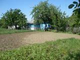 Дома, хозяйства Винницкая область, цена 160000 Грн., Фото