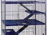 Грызуны Клетки  и аксессуары, цена 2300 Грн., Фото