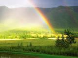 Дачи и огороды Киевская область, цена 52000 Грн., Фото