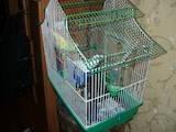 Попугаи и птицы Клетки  и аксессуары, цена 70 Грн., Фото