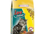 Кошки, котята Корм, цена 13 Грн., Фото