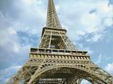 Курси, освіта,  Мовні курси Французька, Фото