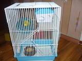 Грызуны Клетки  и аксессуары, цена 250 Грн., Фото