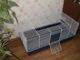 Грызуны Клетки  и аксессуары, цена 300 Грн., Фото