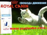 Животные Разное, цена 300 Грн., Фото