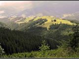 Земля и участки Ивано-Франковская область, цена 200000 Грн., Фото