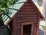 Тварини Різне, ціна 1400 Грн., Фото