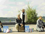 Собаки, щенята Бульмастиф, ціна 4000 Грн., Фото