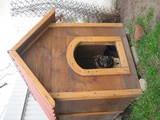 Собаки, щенята Аксесуари, ціна 1000 Грн., Фото