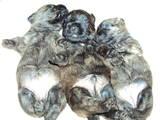 Собаки, щенята Кернтерьер, ціна 7000 Грн., Фото