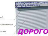 Строительные работы,  Окна, двери, лестницы, ограды Ворота, цена 50 Грн., Фото