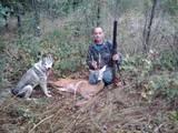 Собаки, щенята Східно-сибірська лайка, ціна 1001 Грн., Фото