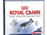 Собаки, щенята Корм, ціна 690 Грн., Фото
