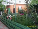 Дома, хозяйства Одесская область, цена 80 Грн./день, Фото