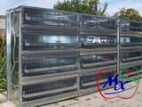 Попугаи и птицы Клетки  и аксессуары, цена 710 Грн., Фото