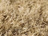 Гризуни Корм, ціна 20 Грн., Фото