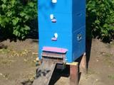 Тваринництво Обладнання пасік, ціна 350 Грн., Фото