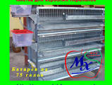 Папуги й птахи Клітки та аксесуари, ціна 710 Грн., Фото
