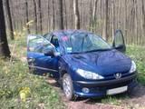 Peugeot 206, цена 120000 Грн., Фото