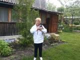 Дачі та городи Харківська область, ціна 290000 Грн., Фото