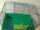 Грызуны Клетки  и аксессуары, цена 100 Грн., Фото