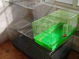 Гризуни Клітки та аксесуари, ціна 150 Грн., Фото