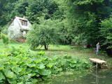 Дачи и огороды Львовская область, цена 250000 Грн., Фото