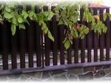 Стройматериалы Заборы, ограды, ворота, калитки, цена 605 Грн., Фото