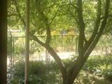 Дачи и огороды Киевская область, цена 780000 Грн., Фото