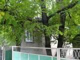Дома, хозяйства Донецкая область, цена 400000 Грн., Фото