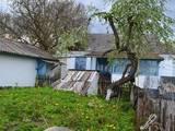 Дома, хозяйства Хмельницкая область, цена 343181 Грн., Фото