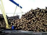 Будматеріали,  Матеріали з дерева Вагонка, ціна 4500 Грн., Фото