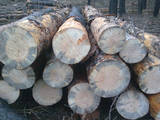 Стройматериалы,  Материалы из дерева Брёвна, цена 550 Грн., Фото
