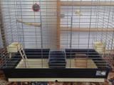 Папуги й птахи Клітки та аксесуари, ціна 745 Грн., Фото