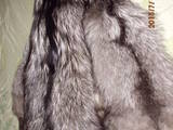 Животные Разное, цена 1850 Грн., Фото