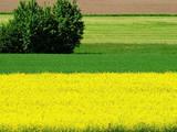 Земля і ділянки Одеська область, ціна 1000000 Грн., Фото