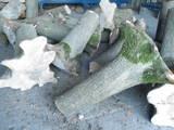 Будматеріали,  Матеріали з дерева Різне, Фото