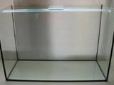 Рибки, акваріуми Акваріуми і устаткування, ціна 970 Грн., Фото