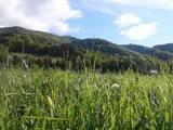 Земля і ділянки Івано-Франківська область, ціна 483123 Грн., Фото