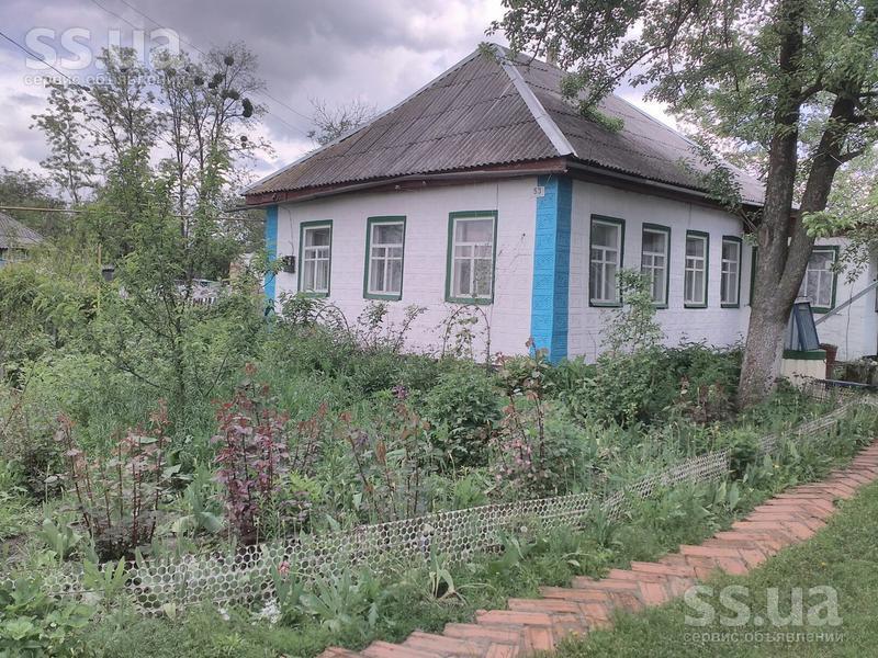 черкаська область город кам янка проститутки