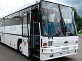 Автобуси, ціна 2448000 Грн., Фото