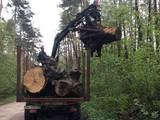 Лесовозы, цена 245000 Грн., Фото